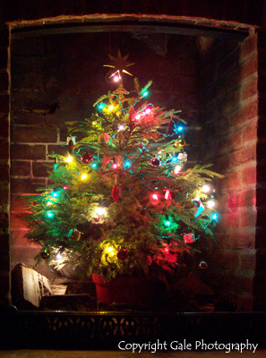 """""""Christmas tree lights"""" by Gale Photography"""