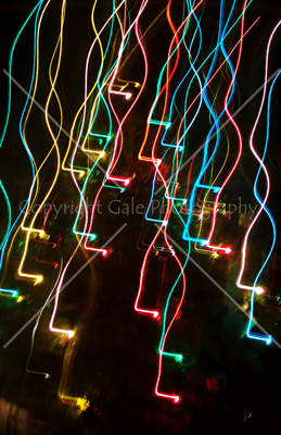 """Creative camera movement"" by Gale Photography"