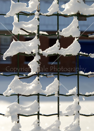 """""""Wire fence and snow"""" by Gale Photography"""